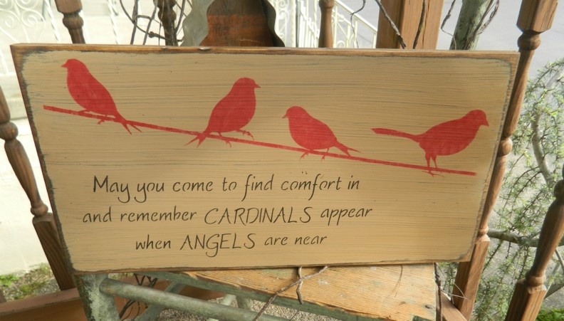 COMFORT CARDINALS APPEAR ANGELS ARE NEAR PRIMITIVE SIGN SIGNS
